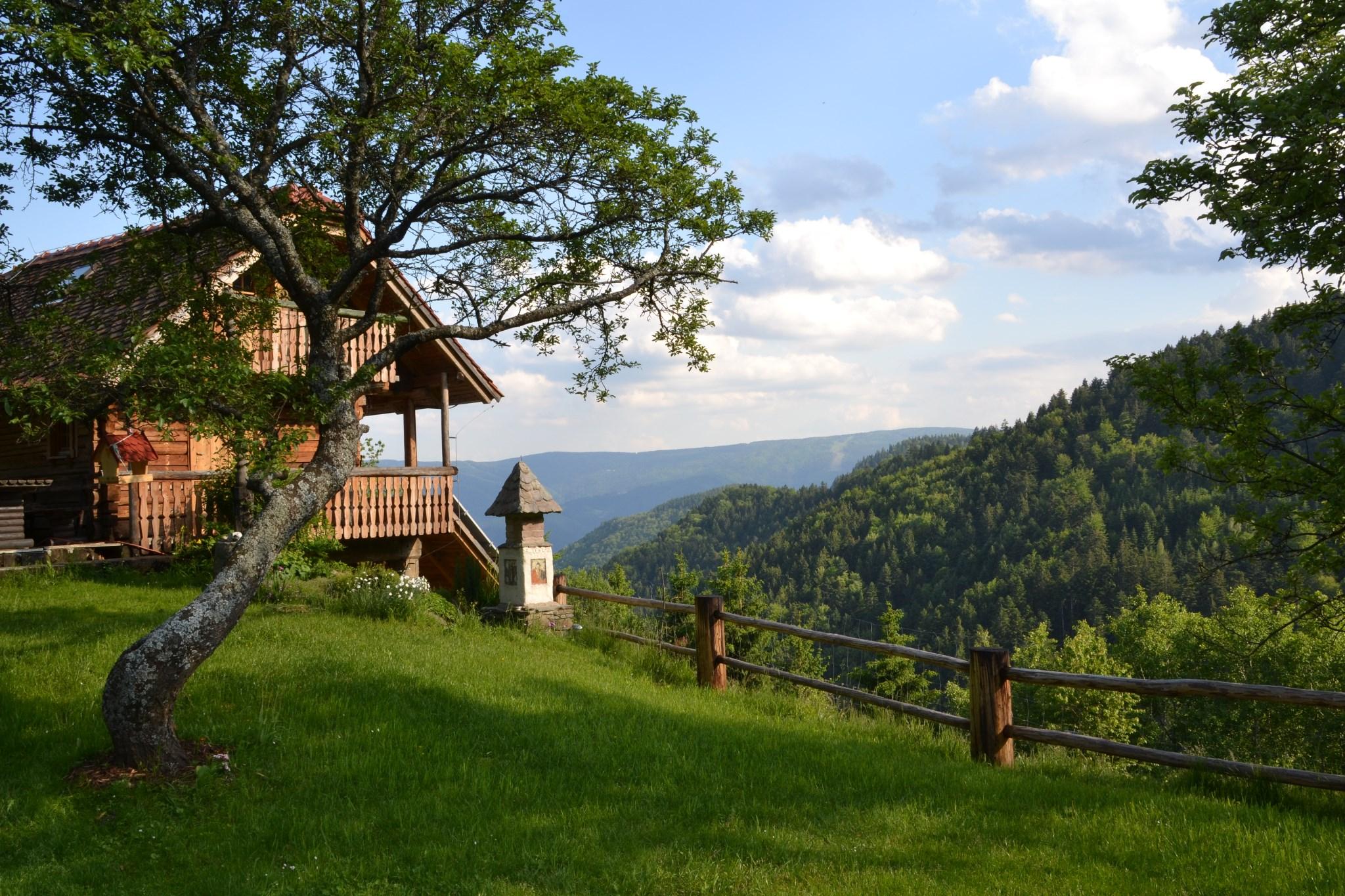 Maribor-Slovenia8