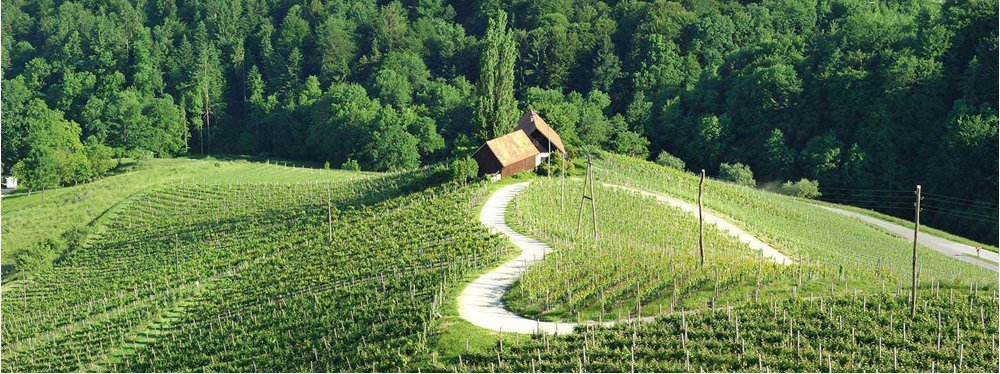 road-heart-slovenia