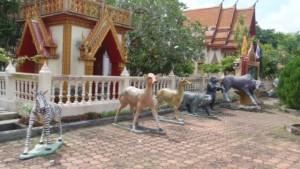 khao-lak06-3