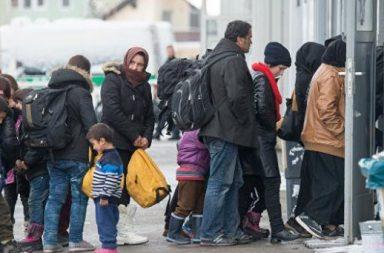 Немецким работодателям нравится, как трудятся мигранты