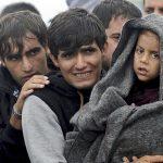 Распространенные заблуждения о кризисе беженцев в Европе