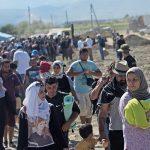 В ООН насчитали 258 миллионов мигрантов по всему миру