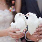 В Германии проводят спецоперацию против фиктивных браков