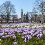 Лучшее время для посещения Дании