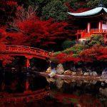 12 фактов, которые следует знать, отправляясь в Японию
