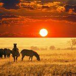 10  лучших стран для посещения в Африке